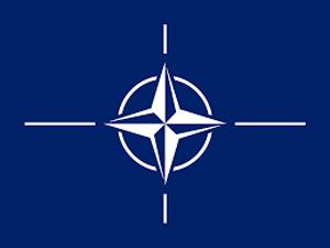 NATO small reel